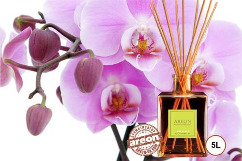 AH Perfum Sticks Eau Dete 5l